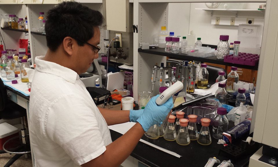 Kris Reyes, winner of the Reference Data Challenge, works with pipettes in the lab.
